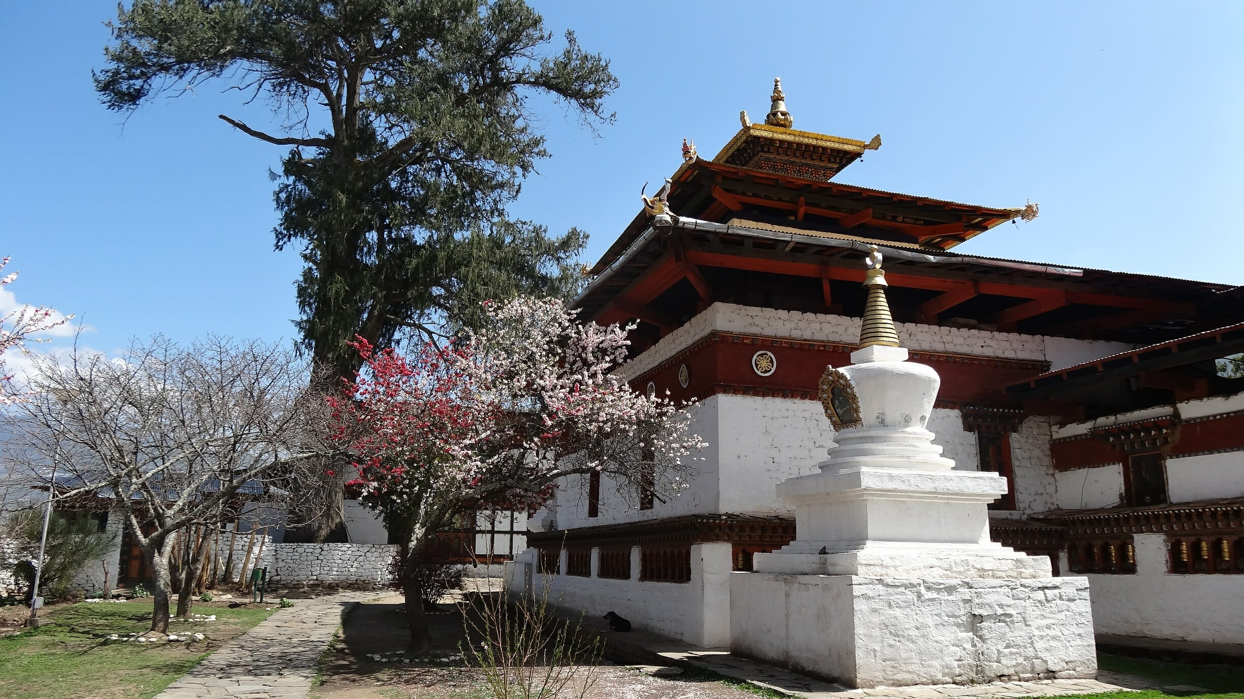Kitchu Lhakhang in Paro